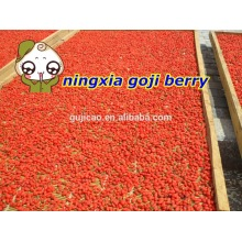 2016 fruit conventional goji berry,organic goji berries,wolfberry