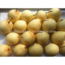 Хорошее качество свежих ягод груши, груши