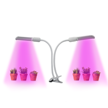 Home plant tent indoor smart led grow light 20w hydroponic system Dual heads led table light for greenhouse plant