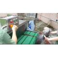 Fischkopf Schneidemaschine Fischkopf Entfernungsmaschine