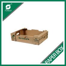 Plateau d'emballage de papier ondulé durable de fruit d'affichage de haute qualité