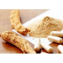 Ginsénosides Extrait de racine de ginseng extrait de Panax Ginseng