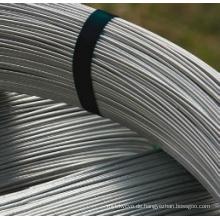 Oval verzinkter Stahldraht für Farmfechten