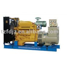 Generador diesel de la serie 135