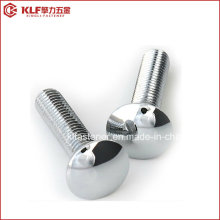 DIN603 Stainless Steel Cap Head Square Neck Carriage Bolt