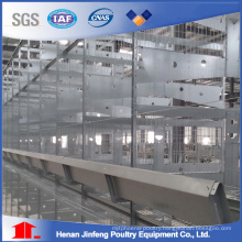 H Type Automatic/Semi Automatic Poultry Equipment for Layer Broiler Chicken Farm