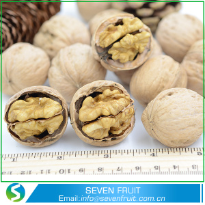 Thin Shell Whole Walnuts In Shell For Sale