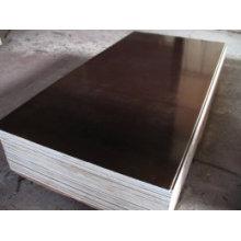 Contre-plaqué filmé Bâton de peuplier utilisé pour la construction