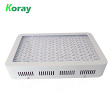 Most powerful Commercial LED grow light 1000w