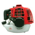Motor de gasolina 1E44F