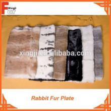 Chinchilla / Liebre / Placa de piel de conejo
