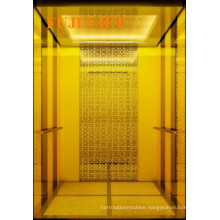 Titanium Gold FUJI Passenger Elevator on Sale