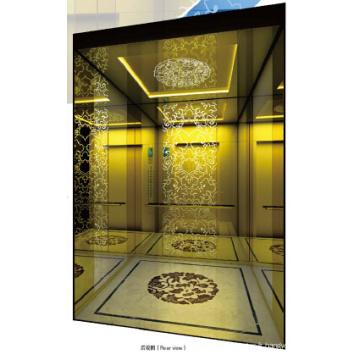 Ascenseur de bâtiment élevé de la taille 400kg de Sicher Machine Roomless
