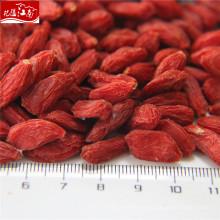 Fabrikversorgung Ningxia Goji Beere Harvester