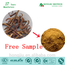 ISO GMP Manufacturer supply Gambir plant extract powder