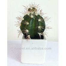 Dekorative künstliche Sukkulenten Großhandel Mini Kaktus Pflanze