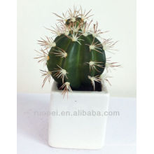 Decorative Artificial Succulent Plants Wholesale Mini Cactus Plant
