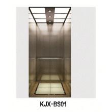 Ascensor Villa con línea de acero inoxidable (KJX-BS01)