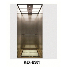Villa Elevator with Hairline Stainless Steel (KJX-BS01)