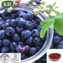 Extrait de Pterostilbene Anti-Oxidiant 20% Myrtille