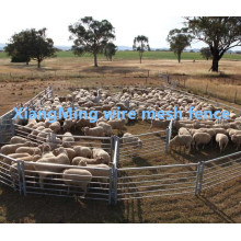 Heavy Durty Sheep Yards Panel para la venta (con ISO9001 y SGS)