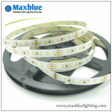 DC24V 224LED/M 3014 CCT Adjustable LED Strip Light