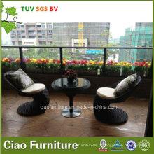 Используемого напольного ротанга PE мебели сада стула адвокатского сословия (CF957T)