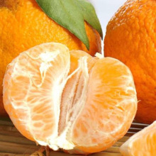 Fresh Citrus Fruits Juicy Oranges