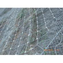 Горячая продавая Sns защищая сетку (W-ZDFHW2)