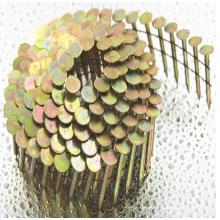 Construção usando o prego da telhadura da bobina para a arma do prego