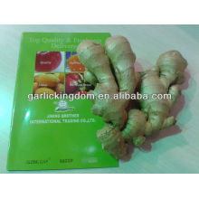 dehydrated ginger from China