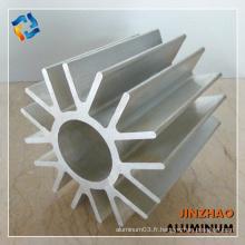 Toutes sortes de profils de dissipateur de chaleur en aluminium