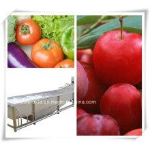 Gemüse oder Obst Reinigung / Waschmaschine