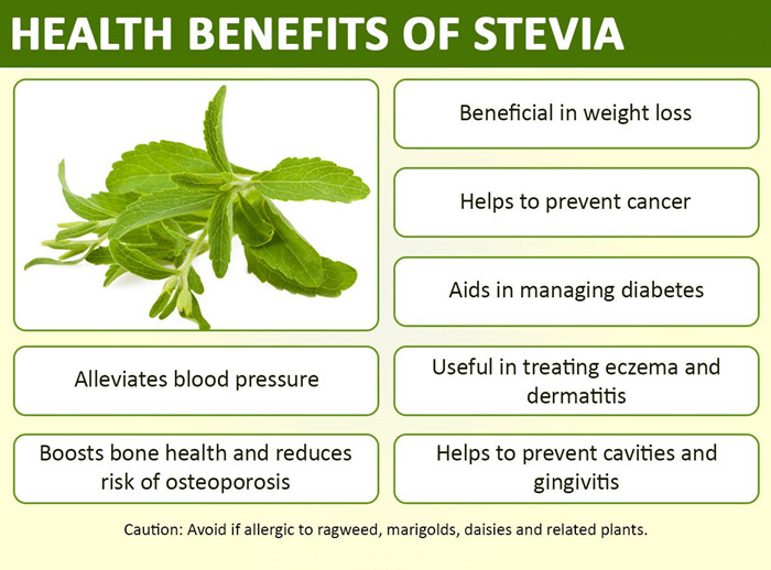 Calorie Free Bulk Pure Stevia Leaves Extract Powder 70