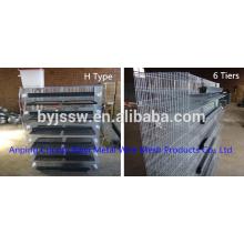 Design de gaiolas de bateria de codorna de alta qualidade