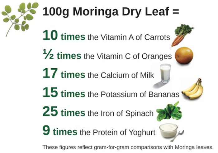 Health Supplements Moringa Leaf Extract Powder ()