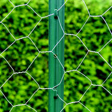 PVC Coated Hexagonal Poultry Wire Netting