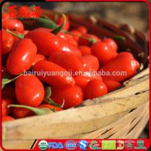 Завод питания сушеные Нинся происхождения ягоды годжи