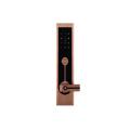 Beautiful and practical apartment locks
