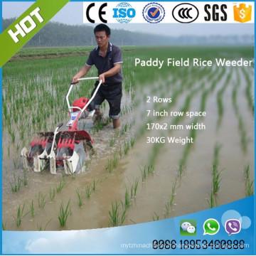 désherbage paddy mahcine / machine agricole