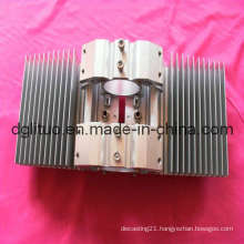 Aluminium Part/ LED Street Light Housing/Aluminum Housing/Aluminum Die Casting/Aluminum LED Part/Aluminum Street Light