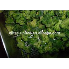 Nouvelle culture iqf de graines de brocolis congelées