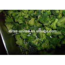 New cultivation iqf frozen broccoli seeds