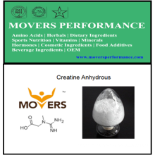 Sports Nutrition: Creatine Anhydrous with CAS No: 57-00-1