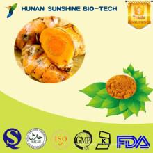 2015 New Certified Organic 95% Curcumin Powder /Turmeric P.E. Turmeric Extract Powder