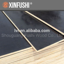 18mm black film faced plywood for construction made in China