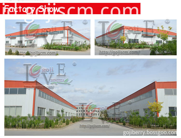 Factory Price Organic Goji Berry factory show