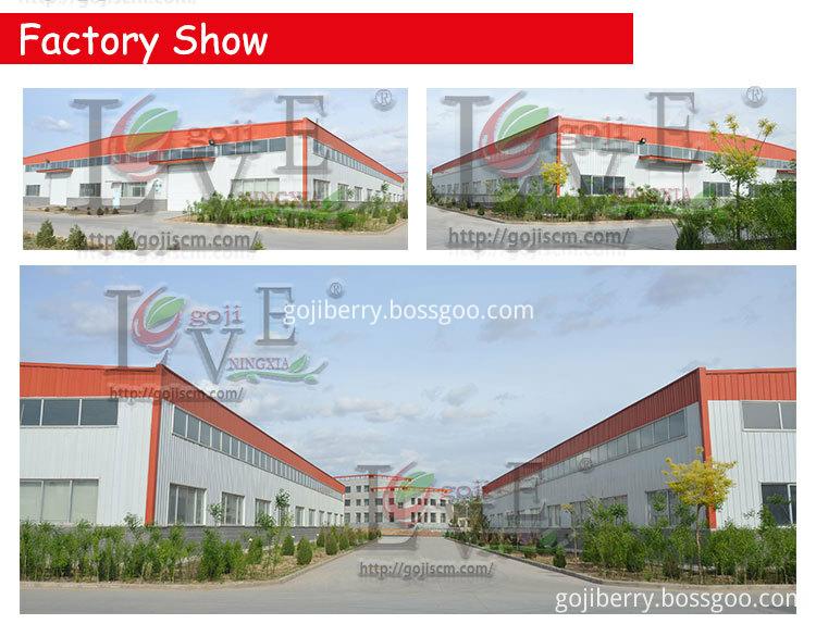 2017 NEW GOJI BERRY factory show