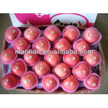 China Fuji Apfel