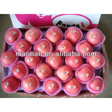 China Fuji Apple